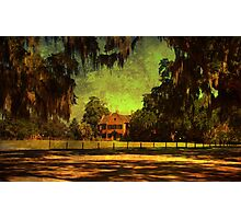 Middleton Place 2 Photographic Print