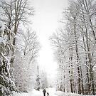 Morming Walk by Gisele Bedard