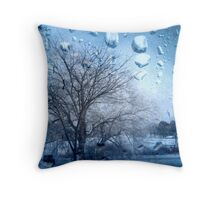 Window Scene ©  Throw Pillow