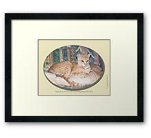 Cat calendar image #8 Raymond in repose  Framed Print