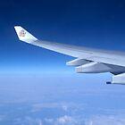 in flight by SUBI