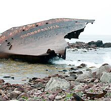 Wreck of the Transpacific by Mark Prior