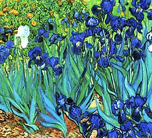 Van Gogh HDR Garden Irises by VintageEraArt