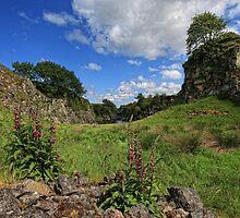 River Thurso, Caithness, Scotland by Martina Cross