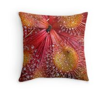 Red Sundew Throw Pillow