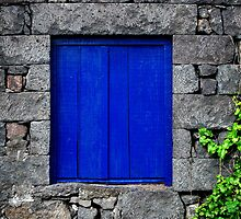 Blue window by Rodrigo Sá da Bandeira