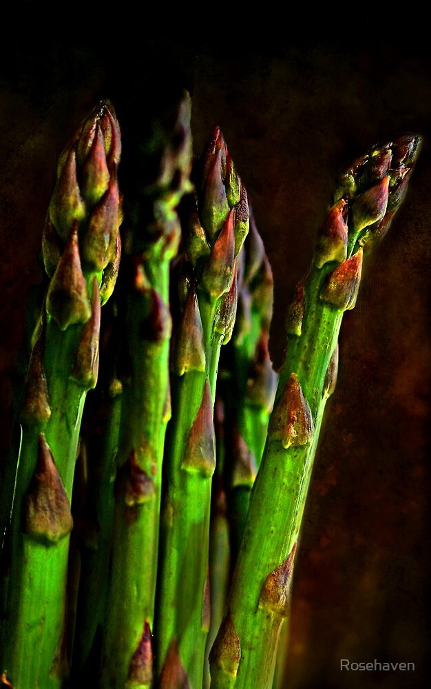"""""""Those Succulent Spears ..."""" by Rosehaven"""