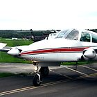 Cessna 310R by SkipperDave