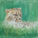 Cheetah by Nightvenjer