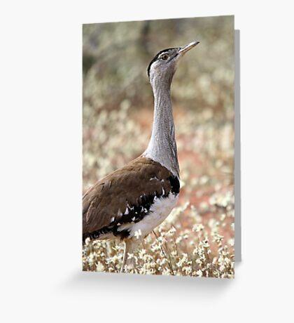 Australian Bustard Greeting Card