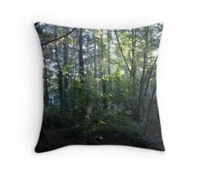 Finding the Way Back Throw Pillow