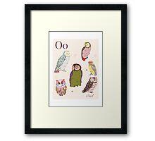 alphabet poster - owls Framed Print