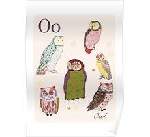 alphabet poster - owls Poster