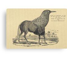 Black Gnoo- Crow hybrid, Jabberwocky quote Lewis Carroll Canvas Print