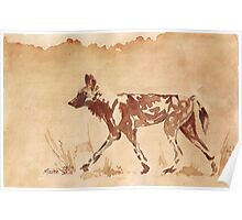 Painted Dog - African Wild Dog Poster