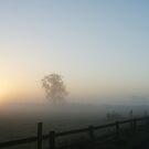 Misty Sunrise by nathanw08