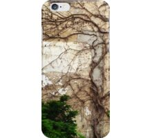 Dead Ivy iPhone Case/Skin