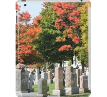 Peaceful Place iPad Case/Skin