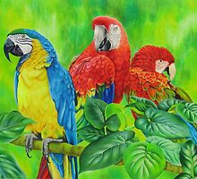 Magnificent Macaws by lanadi