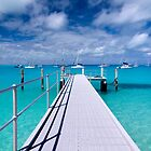"""""""View from the Jetty"""" - Direction Island by Karen Willshaw"""