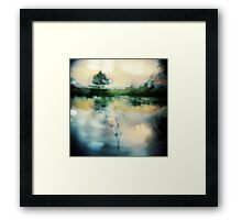 A Midnight's Summer Swan Lake Framed Print