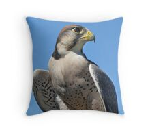 Proud - American Kestrel Throw Pillow