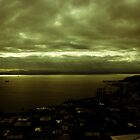 View From The Space Needle by rich stokes