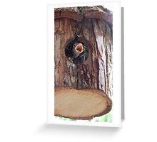 Baby Sparrow Greeting Card