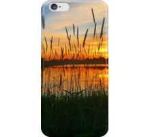 Prairie Grass - Sunset Reflections iPhone Case/Skin