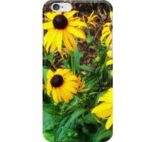 Yellow Prairie Flowers iPhone Case/Skin