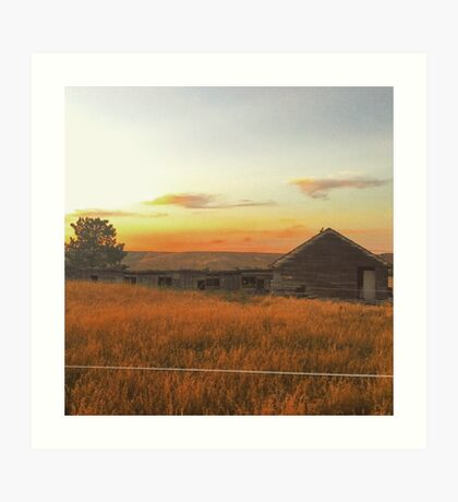 Fields of Gold  Washington State Art Print