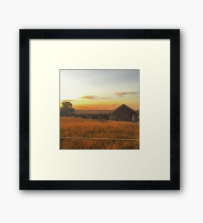 Fields of Gold  Washington State Framed Print