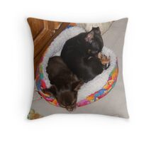 Snuggle Buddies Throw Pillow