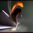 burn by oppositevision