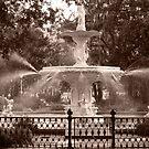 Savannah fountain by DKphotoart
