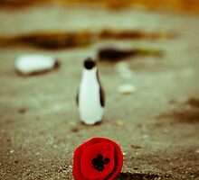 Penguin loves poppy by Iuliana Evdochim