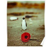 Penguin loves poppy Poster