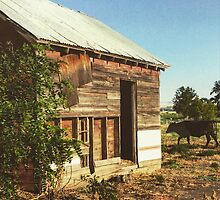 Distressed Red Barn Located in Washington State by JULIENICOLEWEBB