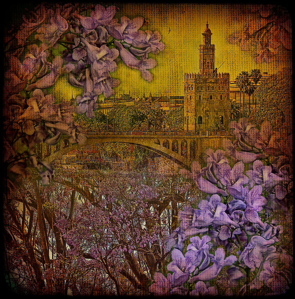Torre del Oro through jacaranda... by egold