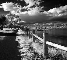 Along the path, Geelong - Australia by peterperfect