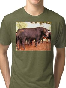 """""""I May Look Gentle, But Try Pushing My Buttons!""""... prints and products Tri-blend T-Shirt"""
