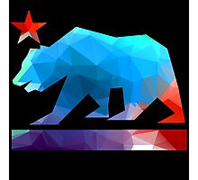 California State Flag Bear (fractal angles) Photographic Print