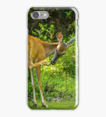 White Tailed Deer Scratching it's Nose iPhone Case/Skin