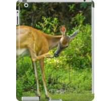 White Tailed Deer Scratching it's Nose iPad Case/Skin