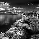 On The Point - Geelong by peterperfect