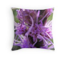 Lavender Whips Throw Pillow