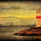 *Approaching the Shoreline* by abhishek dasgupta