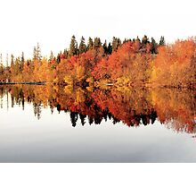 Red trees reflection in mirror lake Photographic Print