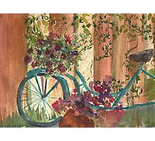Bike and Ivy Photographic Print