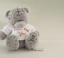Gray Bear by cam1lo